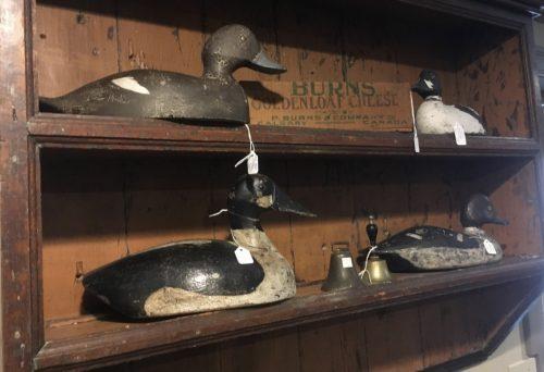 Decoy ducks 1920-30s